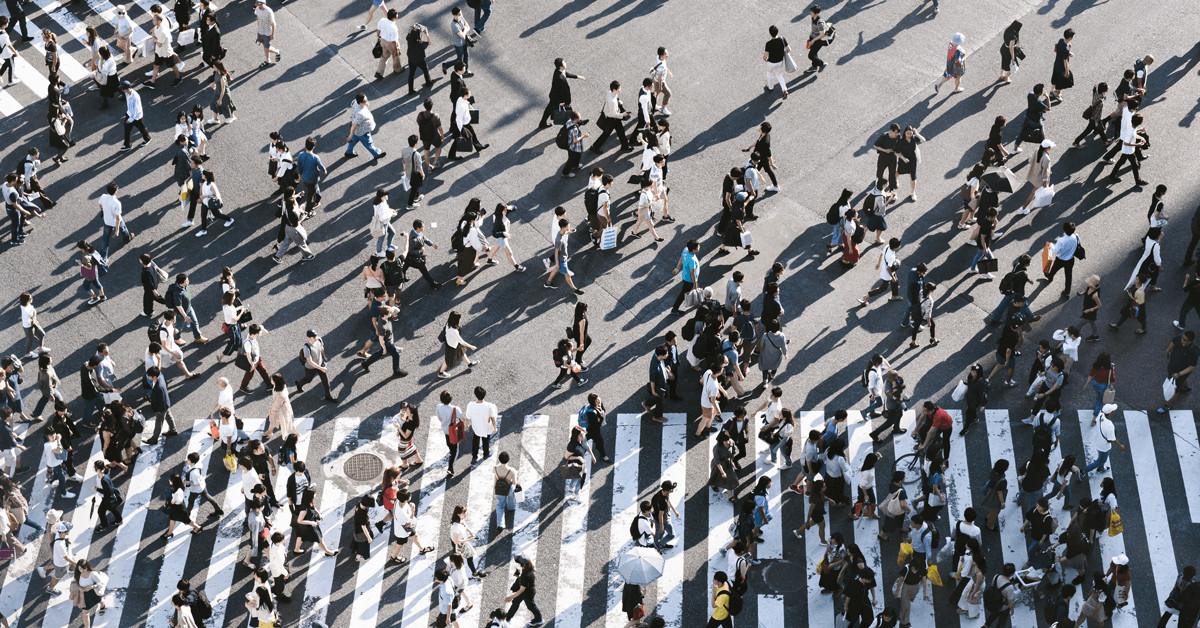 Befolkningsundersøgelse - topchefer og bæredygtighed